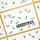 Greentings to you!- bloeikaarten (basilicum)