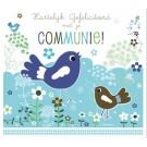 Wenskaart met vogeltjes blauw - hartelijk gefeliciteerd met je communie