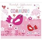 Wenskaart met vogeltjes roze - hartelijk gefeliciteerd met je communie