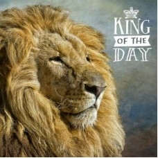 3D wenskaart - Verjaardag -  Leeuw koning