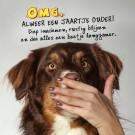 3D wenskaart - Verjaardag - Hond
