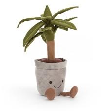 Knuffelplant - Amuseable dragon tree