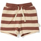 Bruin gestreepte short - Lou shorts striped fig brown