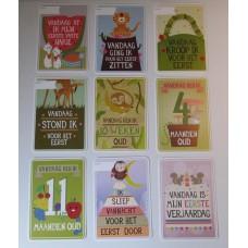 Milestone Baby Cards - Nederlandstalige versie