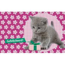 Wenskaart met katje - gefeliciteerd