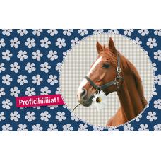 Wenskaart met paard- Proficihiiiiiiat !