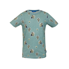 Muntblauwe t-shirt met print - Take light green melange